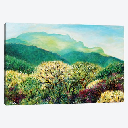 Summer On Grandfather Mountain Canvas Print #JLK60} by Jerry Lee Kirk Canvas Print