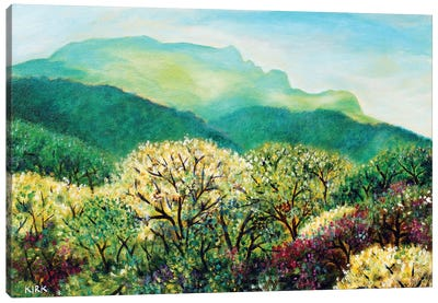 Summer On Grandfather Mountain Canvas Art Print