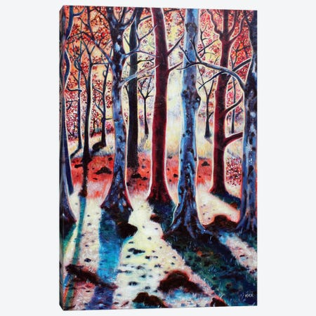 Sunset Woods Canvas Print #JLK65} by Jerry Lee Kirk Canvas Wall Art