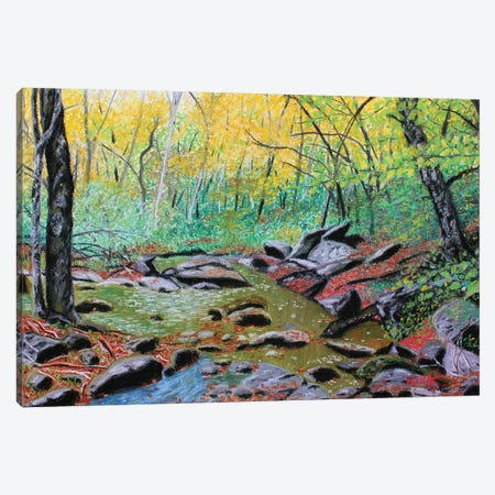 Along The Boone Fork Trail Canvas Print #JLK6} by Jerry Lee Kirk Art Print