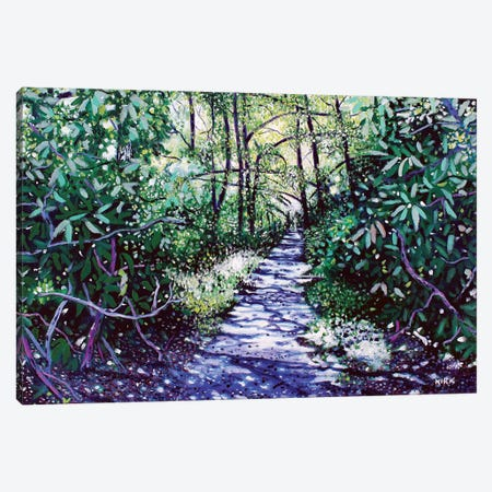 The Glen Burney Trail Canvas Print #JLK70} by Jerry Lee Kirk Canvas Artwork