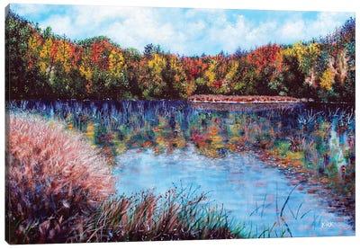 The Lake At Crowders Mountain Canvas Art Print