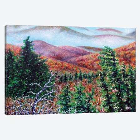 The View From Grandfather Mountain Canvas Print #JLK72} by Jerry Lee Kirk Canvas Wall Art