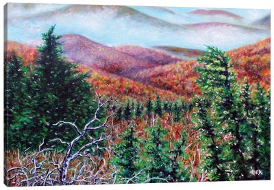 The View From Grandfather Mountain Canvas Art Print