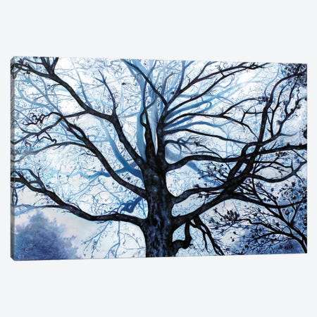 Tree In Fog Canvas Print #JLK79} by Jerry Lee Kirk Canvas Artwork