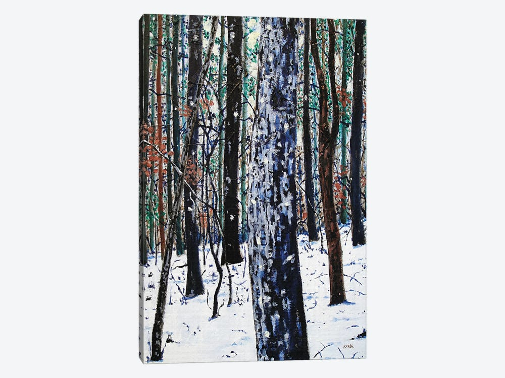 Woods In Snow by Jerry Lee Kirk 1-piece Canvas Print