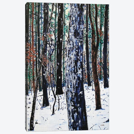 Woods In Snow Canvas Print #JLK86} by Jerry Lee Kirk Canvas Wall Art