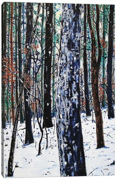 Woods In Snow Canvas Art Print