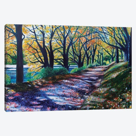 Autumn Canopy Canvas Print #JLK8} by Jerry Lee Kirk Canvas Wall Art