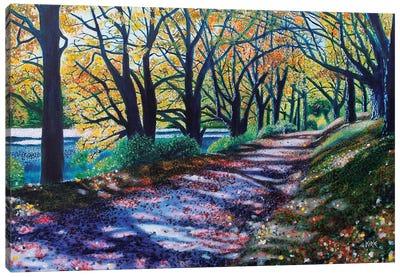 Autumn Canopy Canvas Art Print