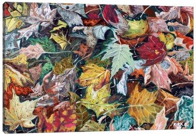 Autumn Debris Canvas Art Print