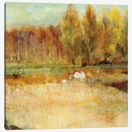 Field of Trees    Canvas Print #JLL121} by Jill Martin Art Print