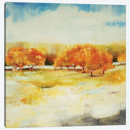 Old Orchard Canvas Print #JLL153} by Jill Martin Canvas Wall Art