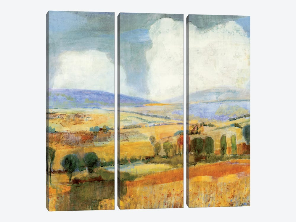 Interconnections by Jill Martin 3-piece Canvas Art Print