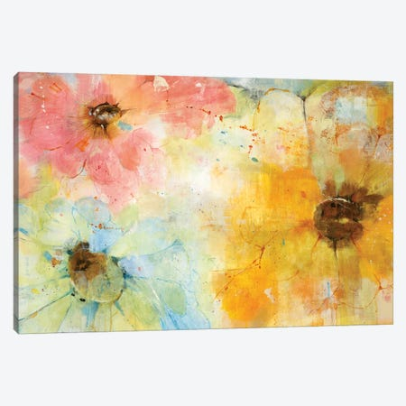 Trio Canvas Print #JLL35} by Jill Martin Canvas Artwork
