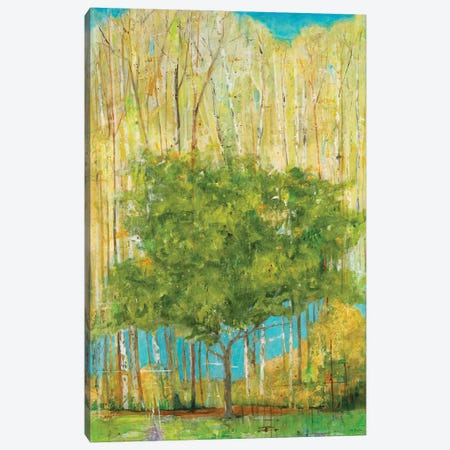 Memory Canvas Print #JLL58} by Jill Martin Canvas Art Print