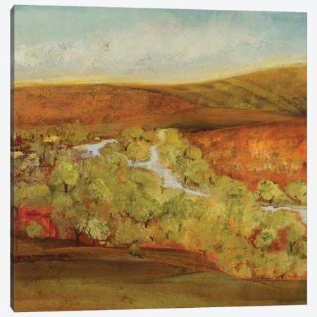 Autumn Saffron II    Canvas Print #JLL83} by Jill Martin Canvas Art