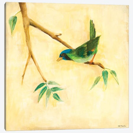 Bird Song III Canvas Print #JLL91} by Jill Martin Art Print