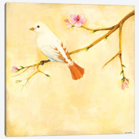 Bird Song IV Canvas Print #JLL92} by Jill Martin Art Print