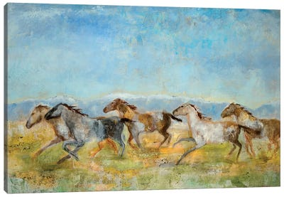 Excitement Canvas Art Print