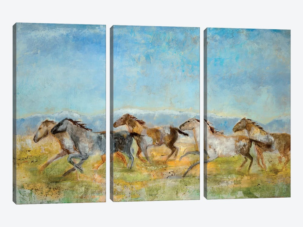 Excitement by Jill Martin 3-piece Canvas Art Print