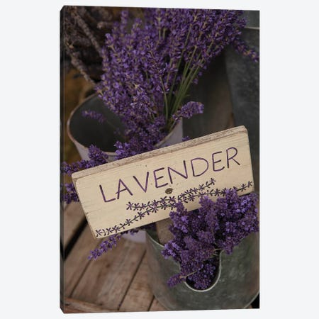 Dried Lavender For Sale, Sequim, Clallam County, Washington, USA Canvas Print #JLM3} by John & Lisa Merrill Canvas Wall Art