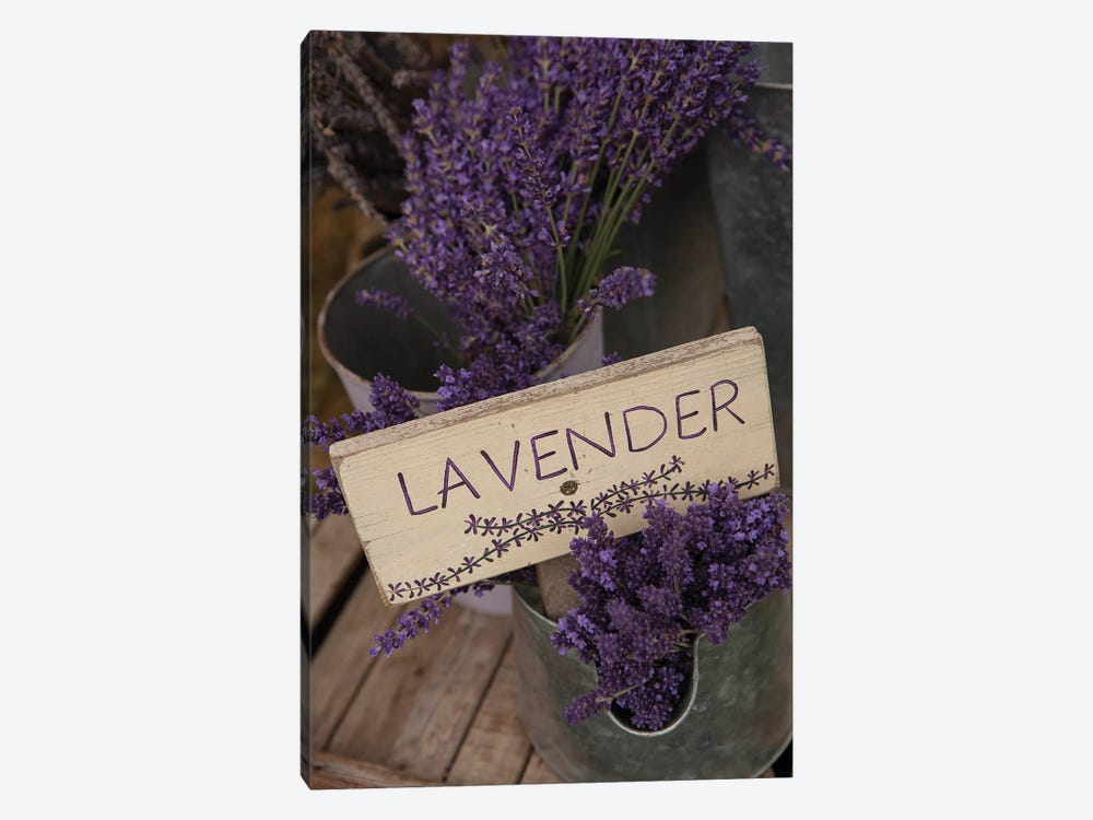 Dried Lavender For Sale, Sequim, Clallam County, Washington, USA by Merrill Images 1-piece Canvas Wall Art