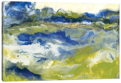Marine Flow I Canvas Art Print