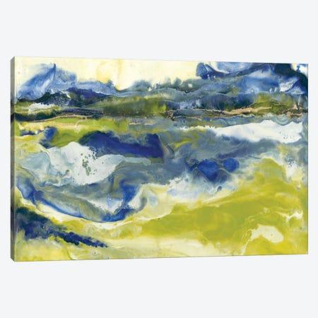 Marine Flow II Canvas Print #JLN2} by J. Holland Art Print