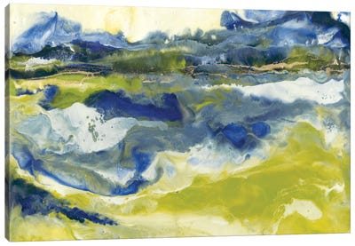 Marine Flow II Canvas Art Print