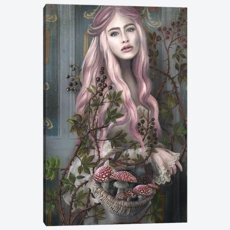 St.Amanita Canvas Print #JLO22} by Juliana Loomer Art Print