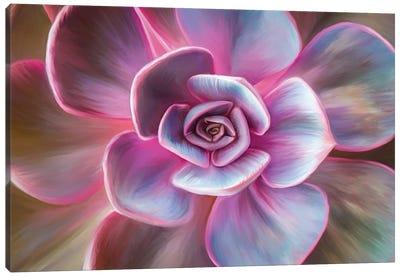 Pink Mandala Canvas Art Print