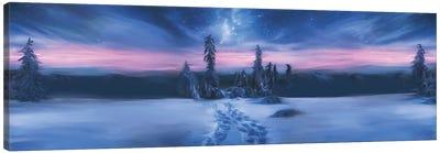 Arctic Blue Canvas Art Print