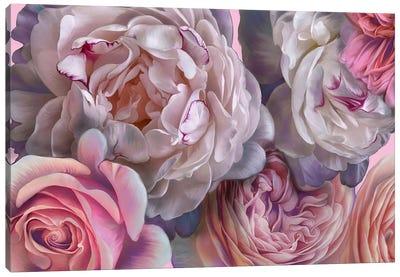 Pink Blush Canvas Art Print