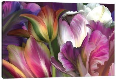 Tulipa Canvas Art Print
