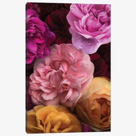 Candy Box Canvas Print #JLO47} by Juliana Loomer Canvas Artwork