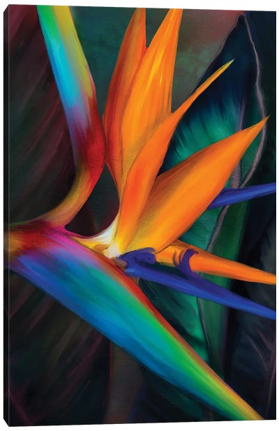 Birds of Paradise Canvas Art Print