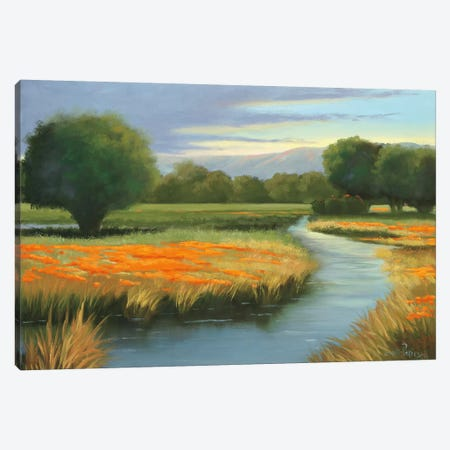 California Orange Canvas Print #JLP2} by Julie Peterson Canvas Artwork