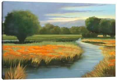 California Orange Canvas Art Print
