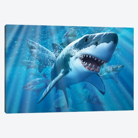 Great White 2 Canvas Print #JLR10} by Jerry Lofaro Art Print
