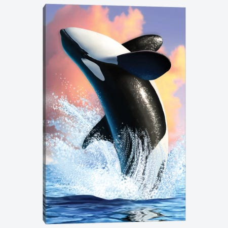 Orca I Canvas Print #JLR15} by Jerry Lofaro Canvas Artwork