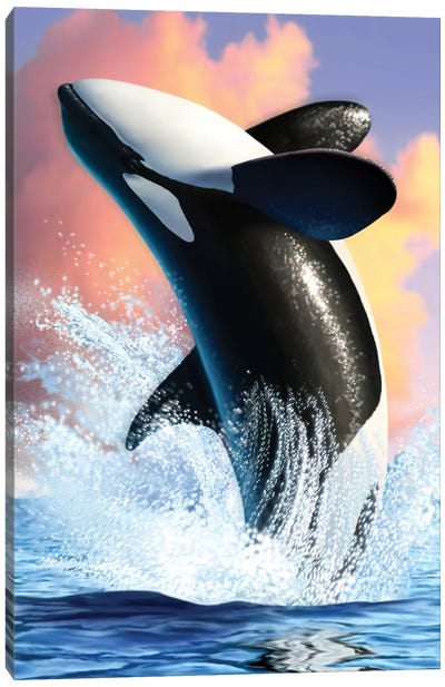 Orca I Canvas Art Print