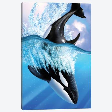 Orca II Canvas Print #JLR16} by Jerry Lofaro Canvas Artwork