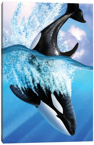 Orca II Canvas Art Print