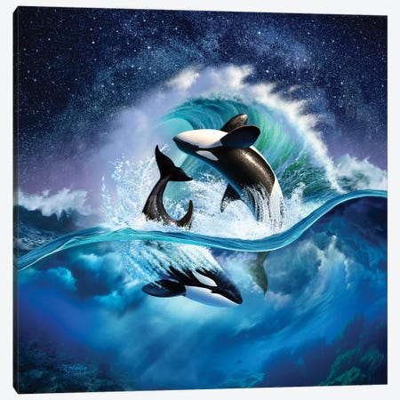 Orca Wave Canvas Print #JLR17} by Jerry Lofaro Canvas Art
