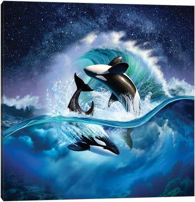 Orca Wave Canvas Art Print