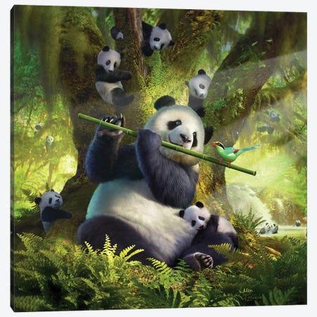 Panda Bear Canvas Print #JLR18} by Jerry Lofaro Canvas Art Print