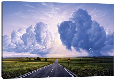 Buffalo Crossing Canvas Art Print