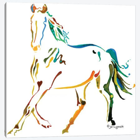 Horse Many Colors II Canvas Print #JLY101} by Jo Lynch Canvas Wall Art