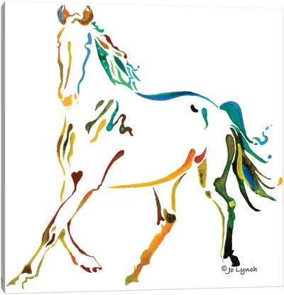 Horse Many Colors II Canvas Art Print